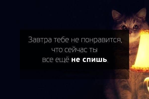1779161_719927061375286_5615084_n